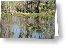 New Orleans - Swamp Boat Ride - 121249 Greeting Card