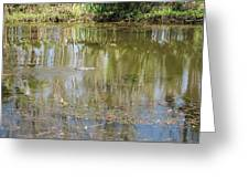 New Orleans - Swamp Boat Ride - 121250 Greeting Card