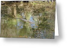 New Orleans - Swamp Boat Ride - 121252 Greeting Card