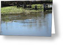 New Orleans - Swamp Boat Ride - 121275 Greeting Card