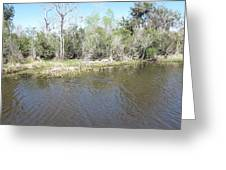 New Orleans - Swamp Boat Ride - 121291 Greeting Card
