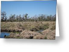 New Orleans - Swamp Boat Ride - 121292 Greeting Card