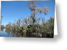 New Orleans - Swamp Boat Ride - 121295 Greeting Card