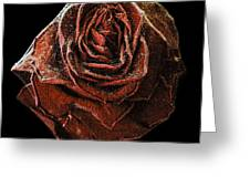Perfect Gothic Red Rose Greeting Card