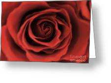 Close Up Heart Of A Red Rose Greeting Card