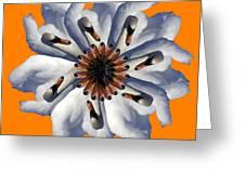 New Photographic Art Print For Sale Pop Art Swan Flower On Orange Greeting Card