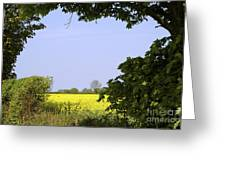 New Photographic Art Print For Sale Yellow English Fields 3 Greeting Card