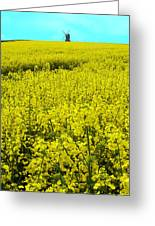 New Photographic Art Print For Sale Yellow English Fields 4 Greeting Card
