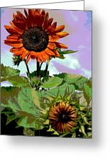 New Sunflowers Greeting Card by Annette Allman
