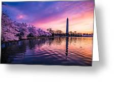 Cherry Blossom Sunrise Greeting Card