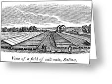 New York Salina, 1841 Greeting Card