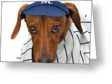 New York Yankee Hotdog Greeting Card