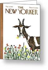 New Yorker May 13th, 1967 Greeting Card
