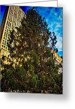 New York's Holiday Tree Greeting Card