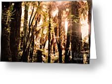 New Zealand Bush Greeting Card