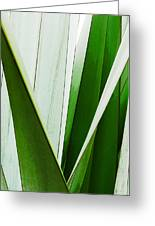 New Zealand Flax Simplified Greeting Card