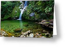 New Zealand Mountain Pure Greeting Card