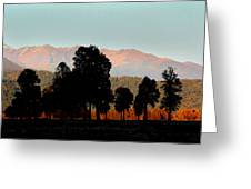 New Zealand Silhouette Greeting Card