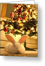 New Zealand White Rabbit Under The Christmas Tree Greeting Card