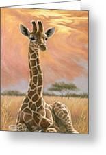 Newborn Giraffe Greeting Card