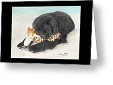 Newfoundland Dog In Snow Stuffed Animal Cathy Peek Art Greeting Card