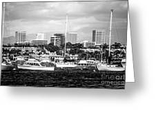 Newport Beach Skyline Black And White Picture Greeting Card by Paul Velgos