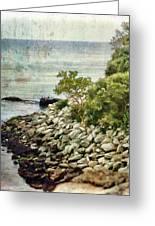 Newport Cliff Walk Greeting Card