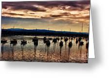 Newport Harbor At Dusk Greeting Card