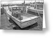 Newport Rhode Island Harbor Iv Greeting Card