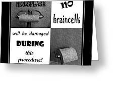 Newsflash No Braincells Will Be Damaged  Greeting Card