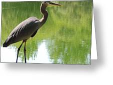 Next To Water Greeting Card