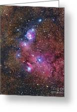 Ngc 6559 Emission And Reflection Greeting Card
