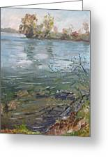 Niagara River Spring 2013 Greeting Card