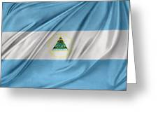 Nicaraguan Flag Greeting Card by Les Cunliffe