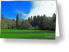 Nice Day In The Park Greeting Card
