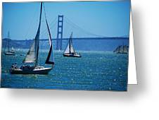 Nice Day On The Bay Greeting Card