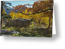 Nice Setting For A Rock Greeting Card