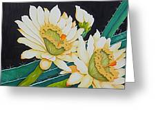 Night Blooming Cactus Greeting Card