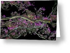 Night Blooms Greeting Card