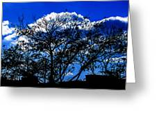 Night Blues Greeting Card