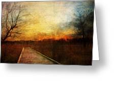 Night Falls Greeting Card