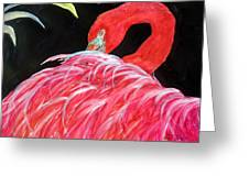 Night Flamingo Greeting Card