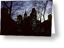Night Lights Empire State Two Trees Greeting Card