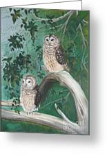 Night Owls Greeting Card