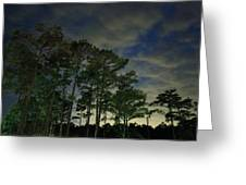 Night Pines Greeting Card