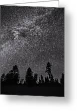 Night Serenity Greeting Card
