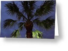 Night Sky Through The Palm Greeting Card