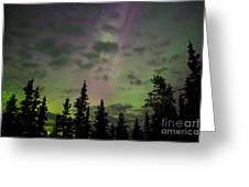 Night Sky With Northern Lights Display Greeting Card