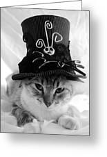 Nightmare Before Christmas Kitty Greeting Card