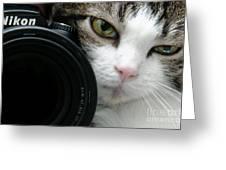 Nikon Kitty Greeting Card